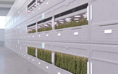 Advancing Plant-Based Pharma like Cannabis with Sensors and IoT Platform